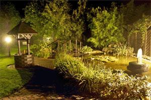 Installer et construire un bassin   Gamm vert