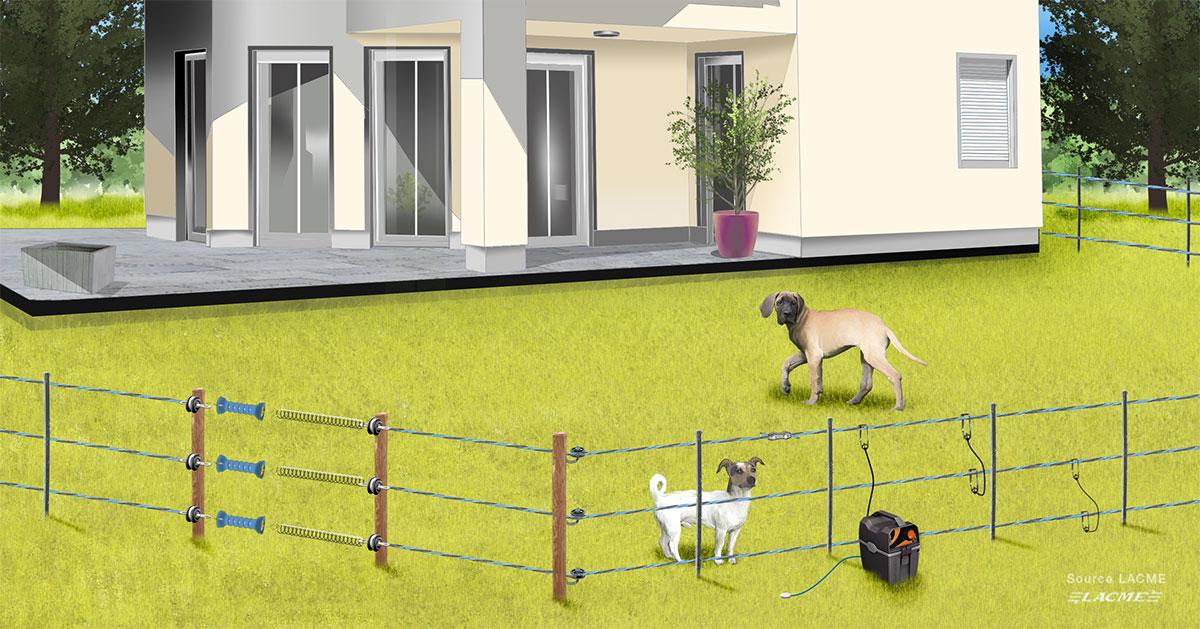 Choisir sa clôture électrique pour animaux : chien, chevaux ...