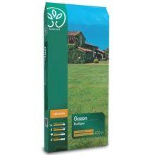 gazon en plaque gamm vert