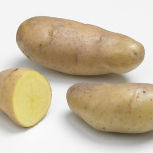 Quelles vari t s de pommes de terre planter gamm vert - Date plantation pomme de terre ...