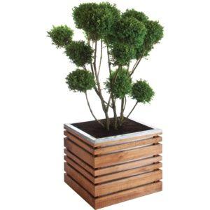 Bacs à Plantes En Bois Gamm Vert