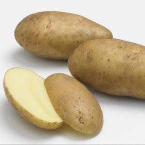 Quand couper les feuilles de pommes de terre gamm vert - Quand ramasser les pommes de terre ...