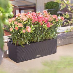 Pots Bacs Jardinieres Pour Balcon Gamm Vert