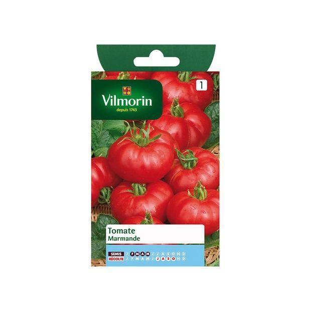 tomate 39 marmande 39 vf sachet de graines de 2g gamm vert. Black Bedroom Furniture Sets. Home Design Ideas