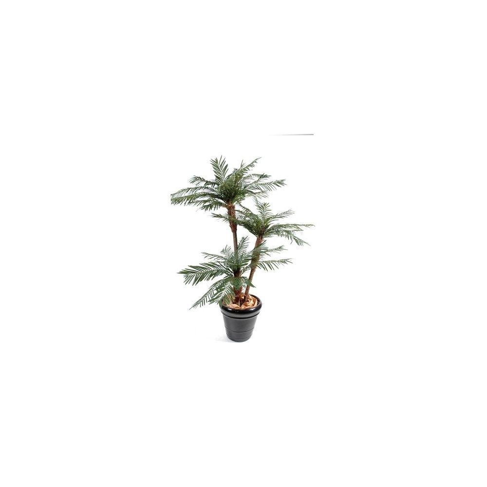 Palmier 3 Troncs H200cm, pot classique