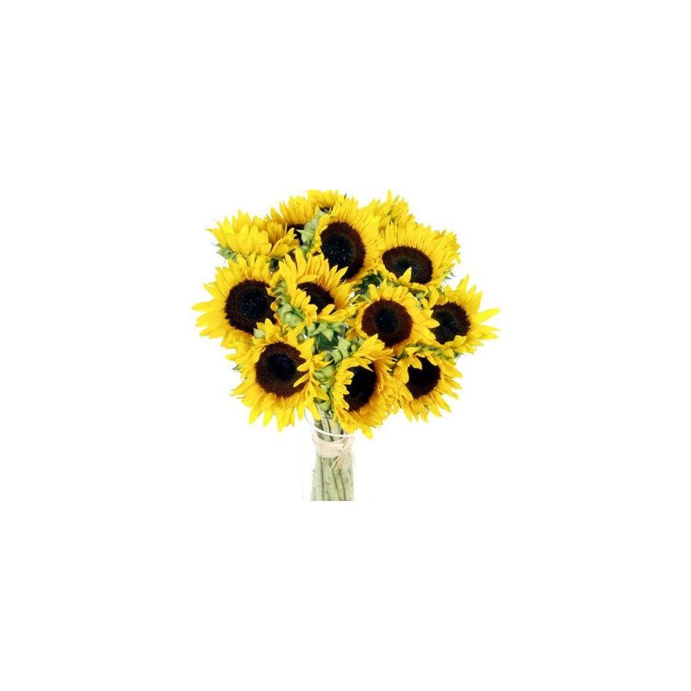 bouquet tournesol boite cadeau - gamm vert