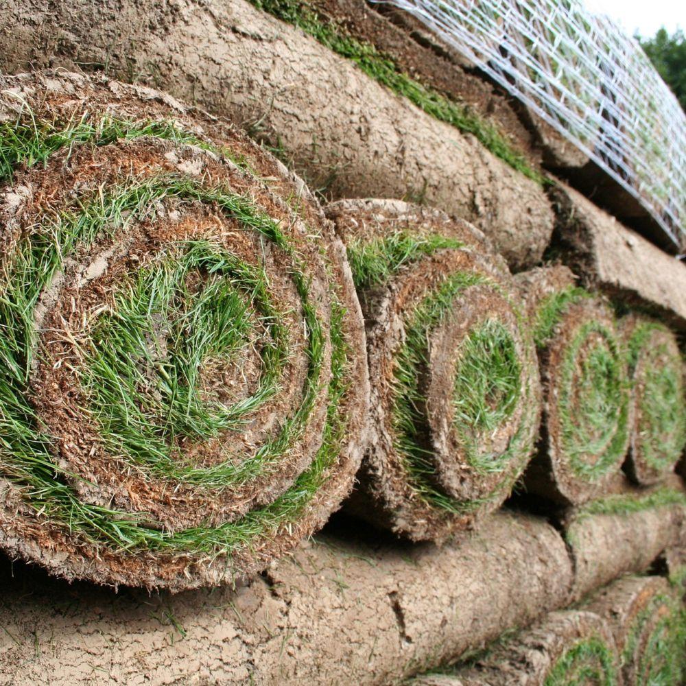 Gazon naturel en rouleau x 1m2 rouleau 0 4m x 2 5m 20 rouleaux minimum sur palette gamm vert - Castorama rouleau jardin nice ...