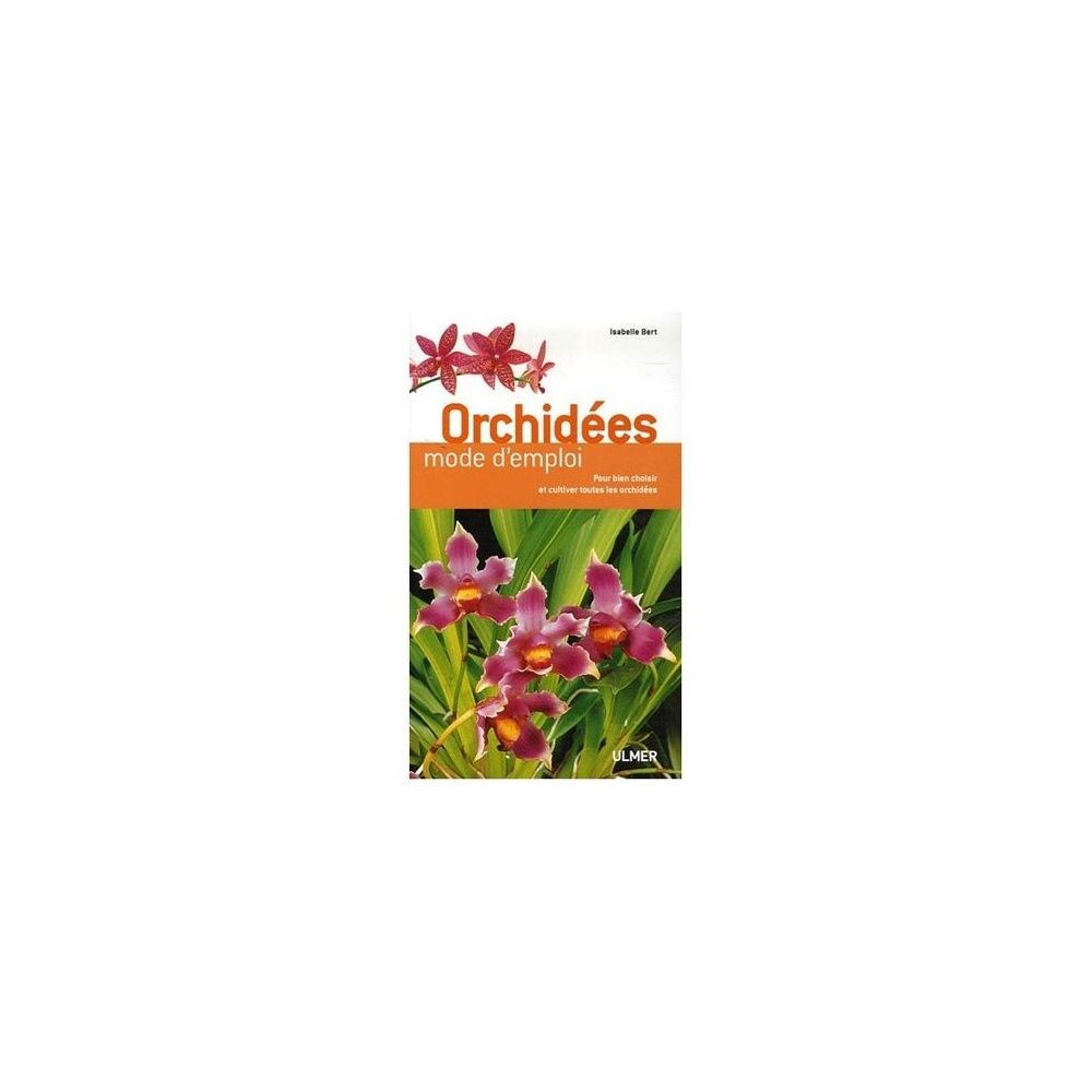 Orchidées : mode d'emploi