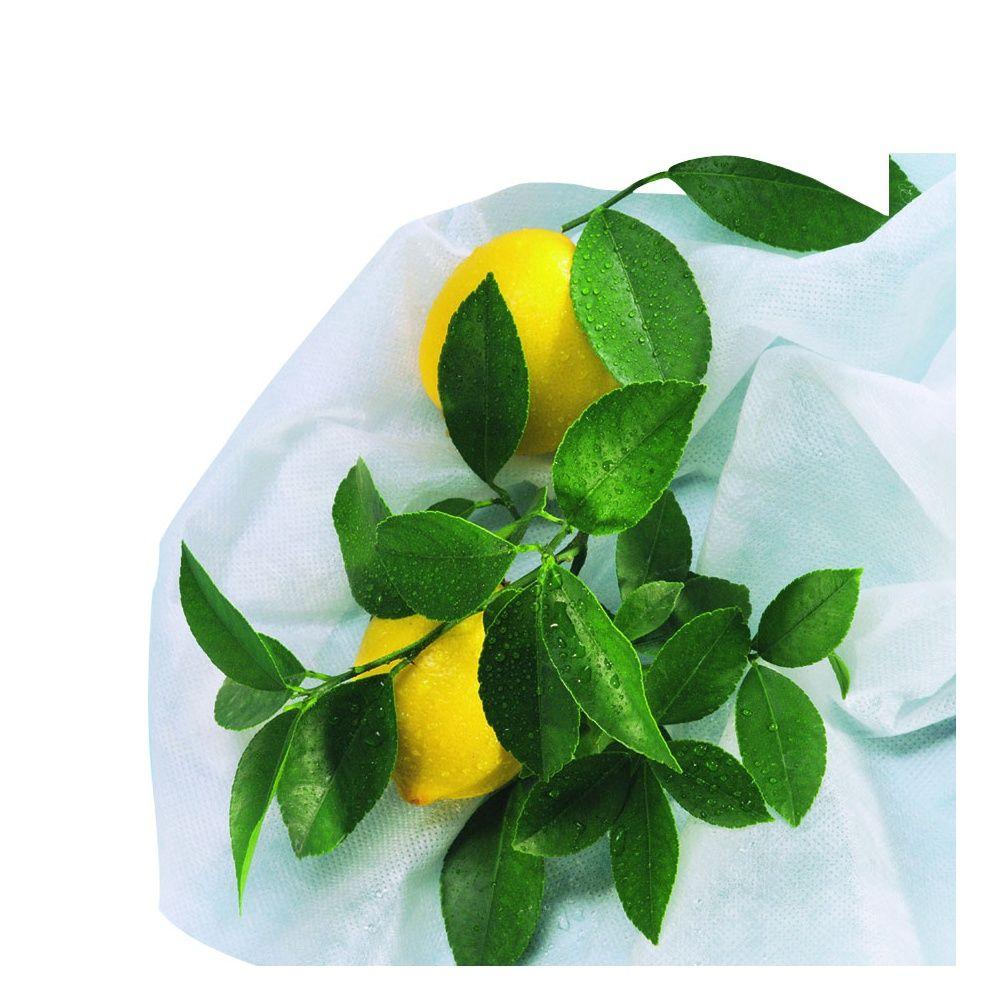 3 housses d 39 hivernage pour plantes et arbustes en pots hiversac nort ne gamm vert. Black Bedroom Furniture Sets. Home Design Ideas