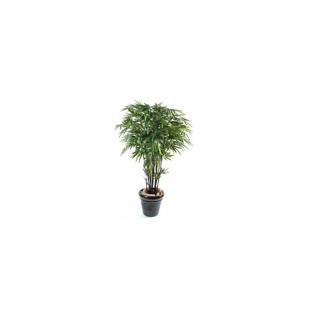 Bambou à cannes noires H210cm, pot classique