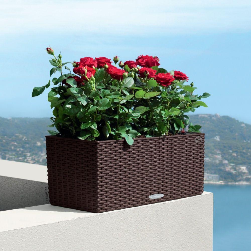jardiniere balconnière lechuza - Pots de Fleurs En Folies