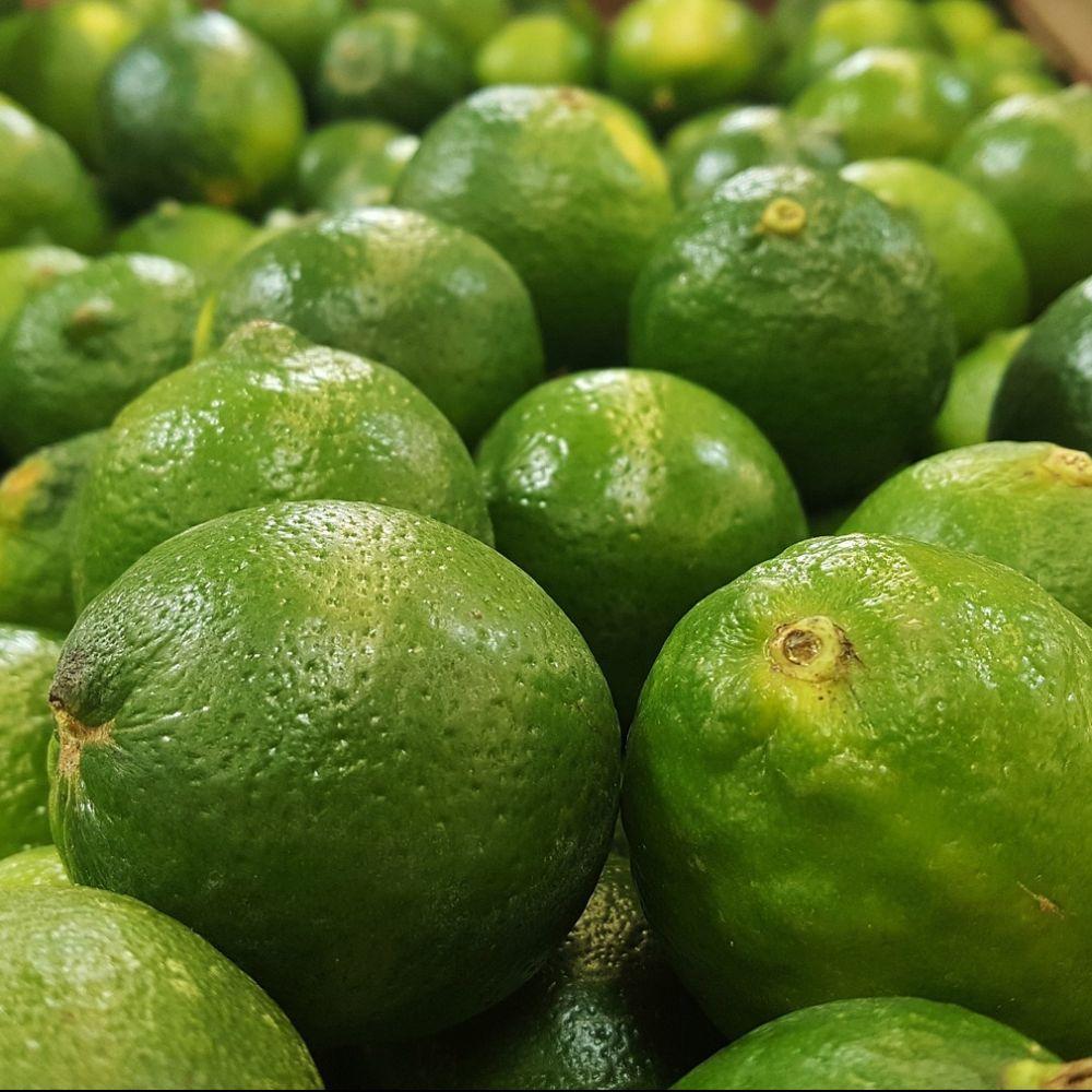citronnier lime vert pot de 5 litres hauteur 30 40cm gamm vert. Black Bedroom Furniture Sets. Home Design Ideas