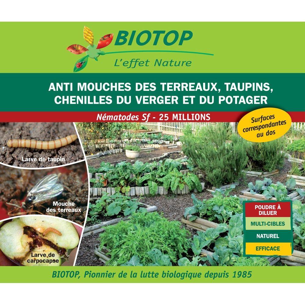 Nématode Sf contre chenilles du verger 50m2 de traitement Biotop