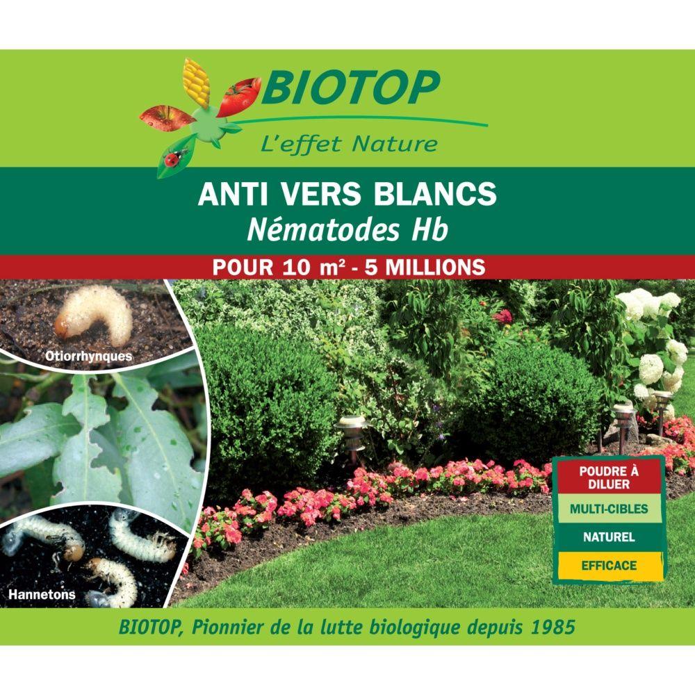 Nématode Hb 5 millions contre vers blancs – Biotop