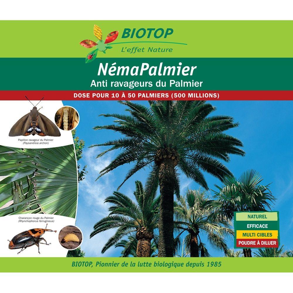 Nématodes Néma-Palmier (500 millions) contre ravageurs du palmier – Biotop