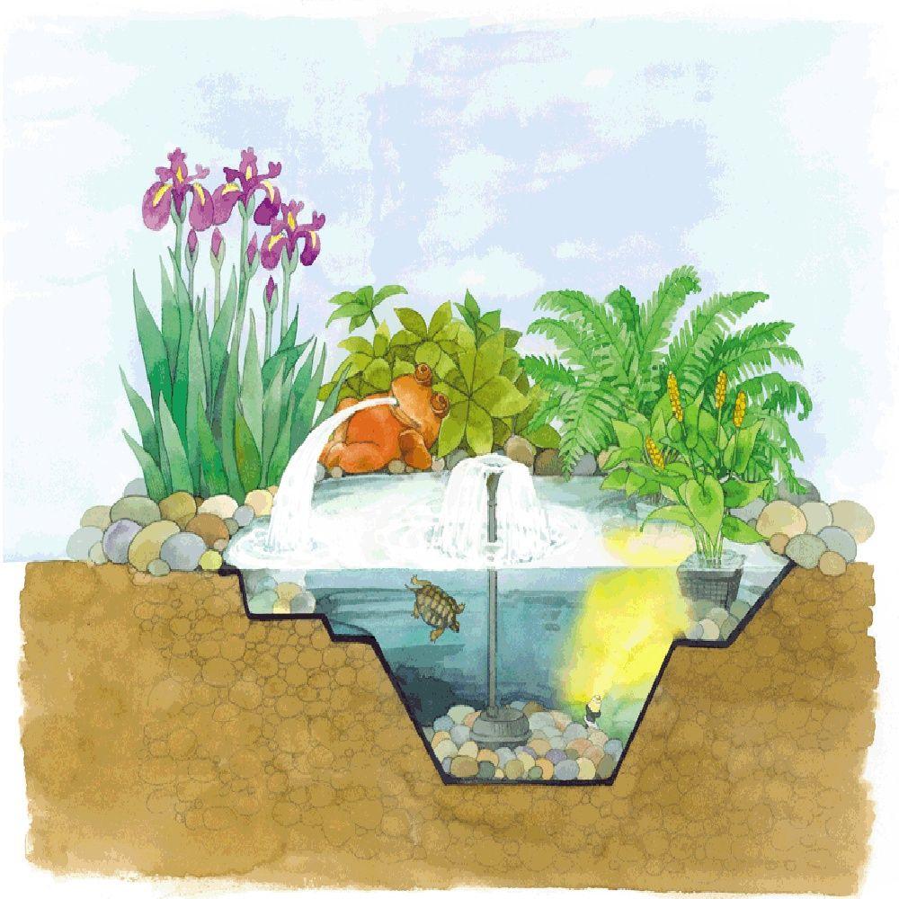 Bassin pr form en poly thyl ne oase 1000l gamm vert for Bassin poisson 250 litres