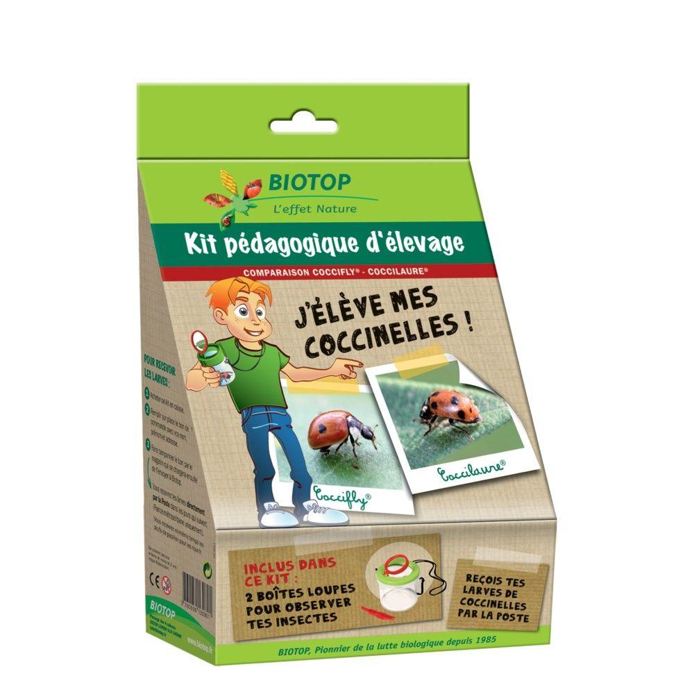 Kit pédagogique d'élévage Coccifly/Coccilaure – Biotop
