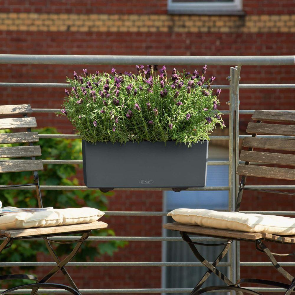 Jardinière Lechuza Balconera Trend L50 H19 cm gris
