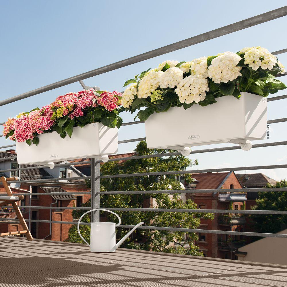 Jardinière Lechuza Balconera Trend L80 H19 cm blanc + Support