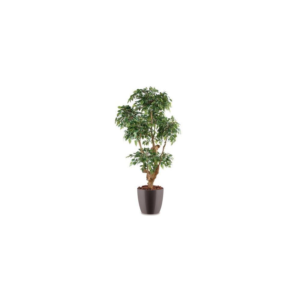 Ficus Natasja 5 têtes H170cm (tronc naturel, feuillage artificiel) pot elho gris