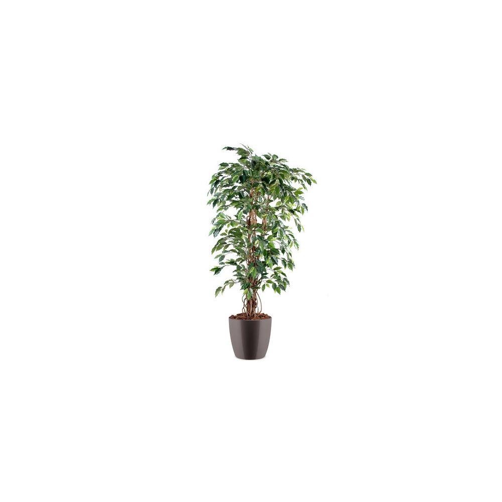 Ficus lianes grandes feuilles H150cm (tronc naturel, feuillage artificiel) pot elho gris
