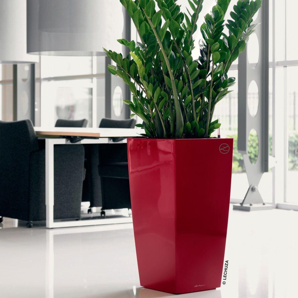 Pot Lechuza Cubico Premium L30 H56 cm rouge Carton - Gamm Vert