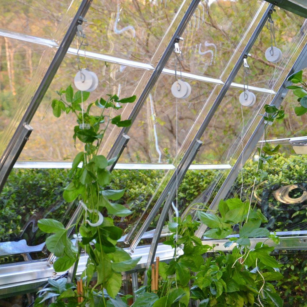 kit d 39 accroche pour la culture de tomates en serre gamm vert. Black Bedroom Furniture Sets. Home Design Ideas