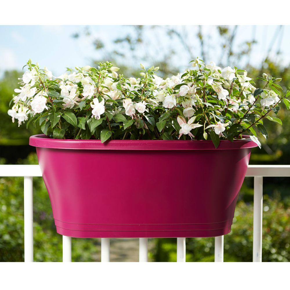 http://photos.gammvert.fr/v5/products/full/37369-jardiniere-elho-corsica-flower-bridge-l60-h24-cm-cerise-6.jpg