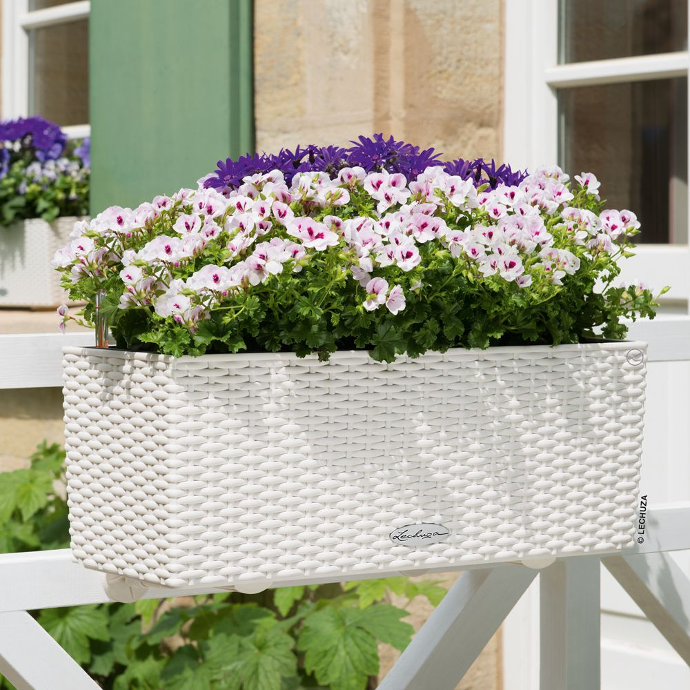 jardini re lechuza balconera cottage l50 h19 cm blanc gamm vert. Black Bedroom Furniture Sets. Home Design Ideas