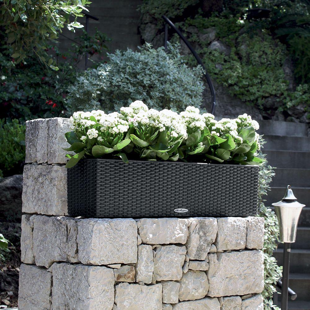 Jardinière Lechuza Balconera Cottage L80 H19 cm granit