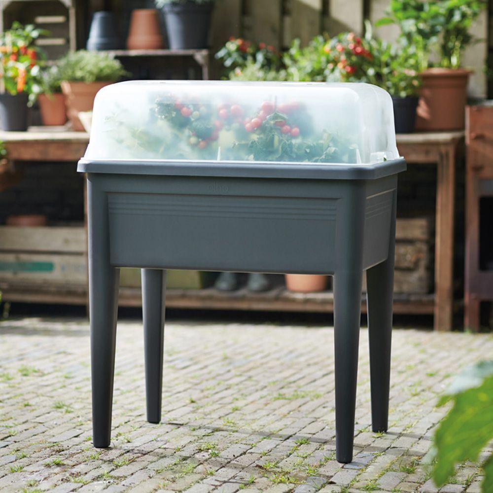carr potager sur pieds avec cloche elho l76 h65 1 cm noir gamm vert. Black Bedroom Furniture Sets. Home Design Ideas