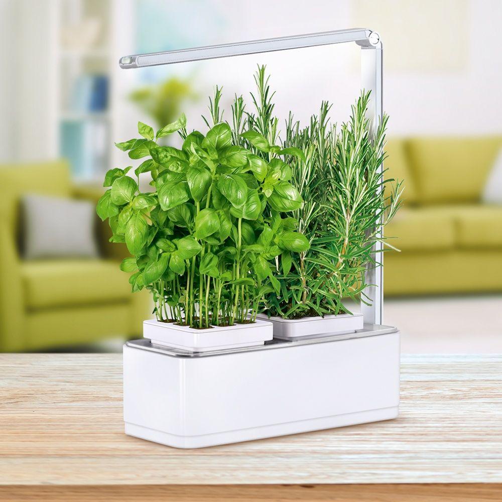 potager d 39 int rieur 1 5l nessia kitchen gardening 41x24x31 cm gamm vert. Black Bedroom Furniture Sets. Home Design Ideas