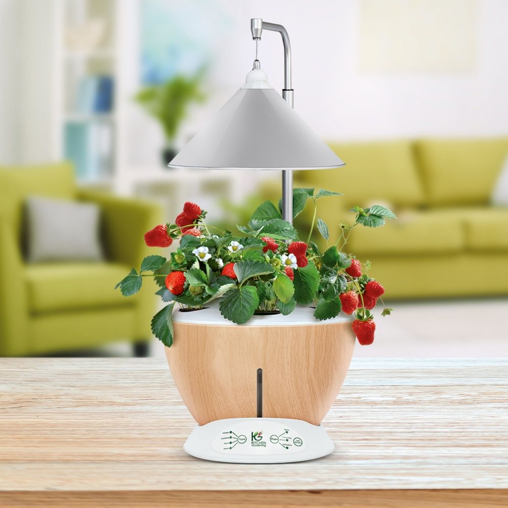 potager d 39 int rieur 6l nestor kitchen gardening 50x40x40 cm gamm vert. Black Bedroom Furniture Sets. Home Design Ideas
