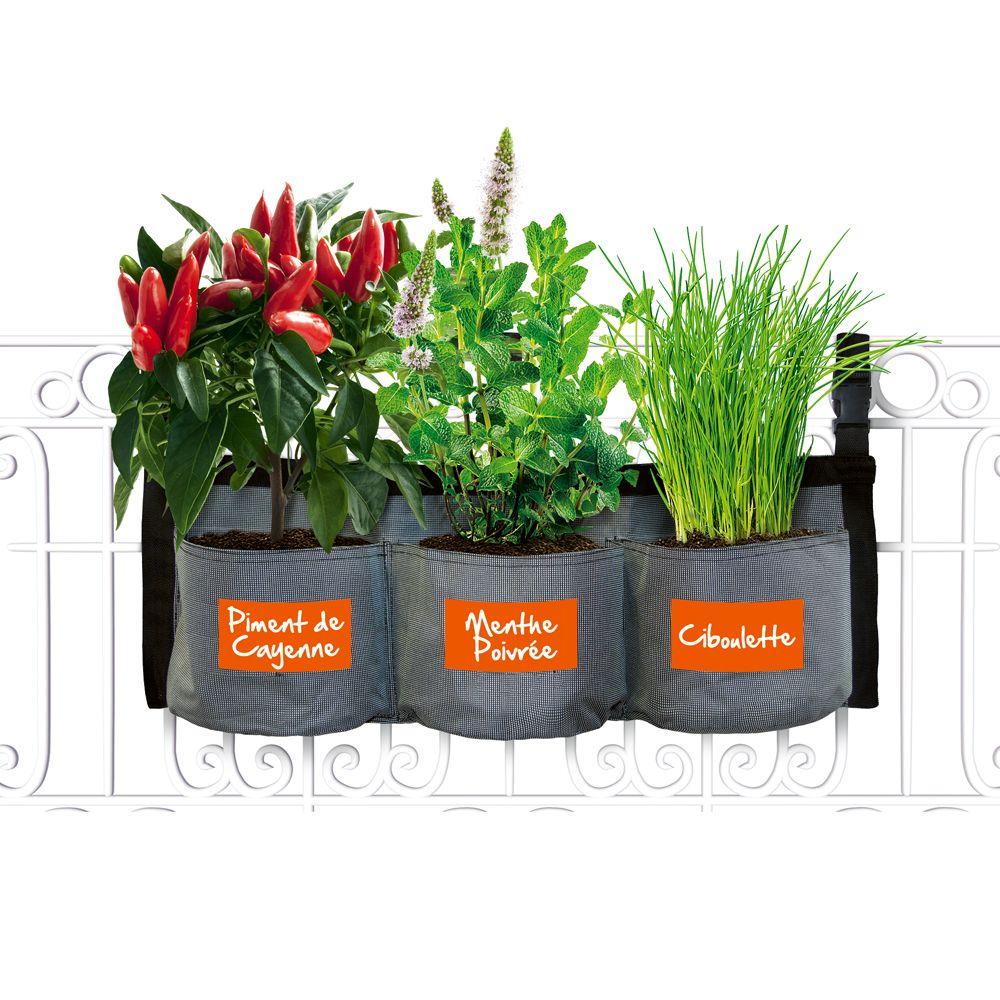 kit croq 39 intenses avec jardini re textile suspendre kitchen gardening 36x16x27 gamm vert. Black Bedroom Furniture Sets. Home Design Ideas