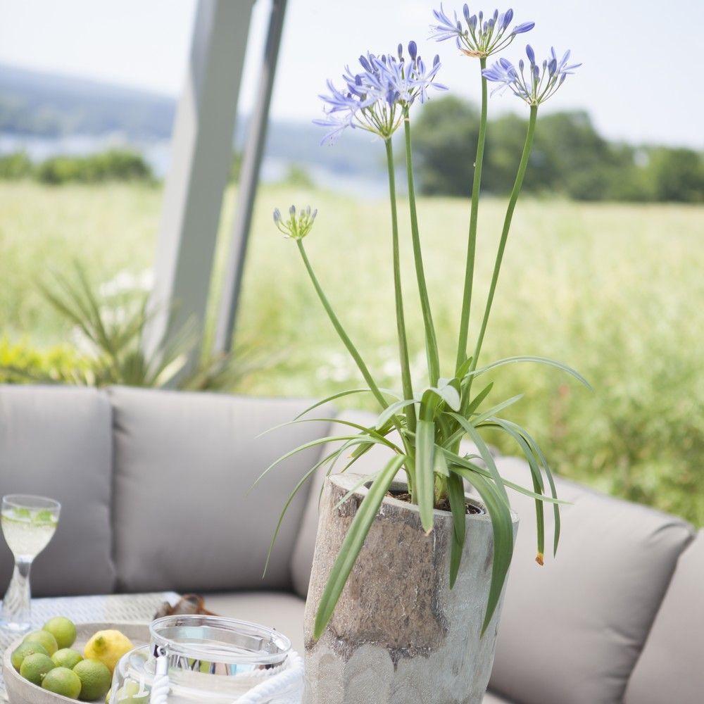 salon de jardin kettler marbella r sine canap table 2 tabourets 260x90x100 cm gamm vert. Black Bedroom Furniture Sets. Home Design Ideas