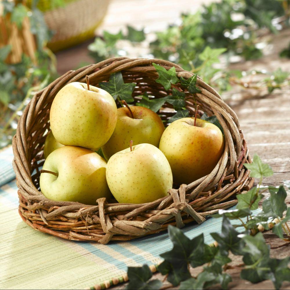 Pommier Tentation ® – delblush – Fruitier Georges Delbard