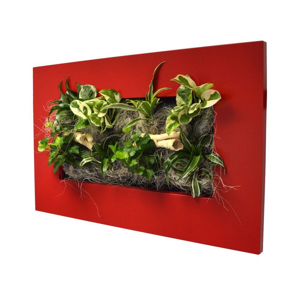 Tableau v g tal wallflower kyoto rouge m cadre v g tal - Tableau vegetal ...