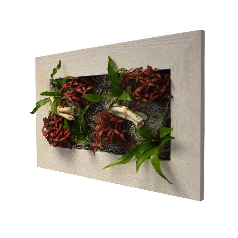 Tableau v g tal wallflower kyoto vieux bois blanchi m - Tableau vegetal ...