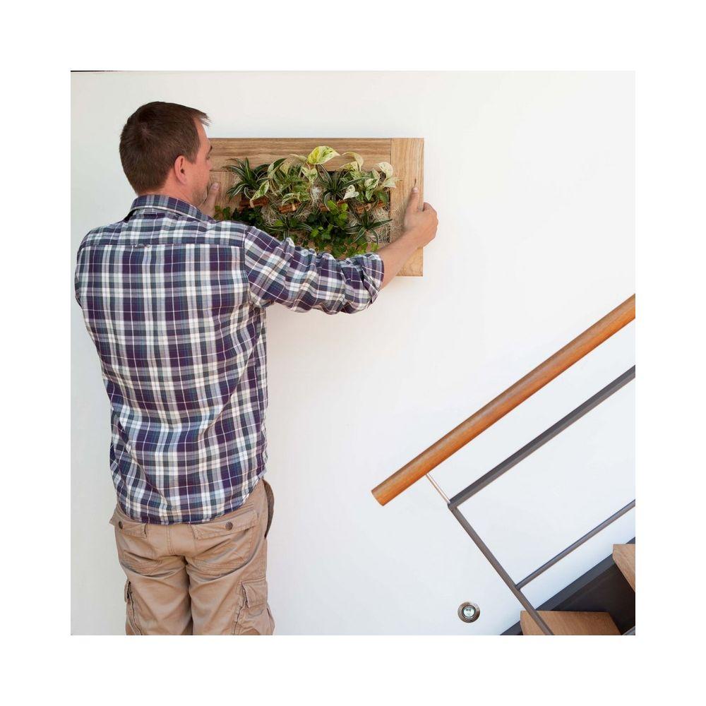 tableau végétal wallflower kyoto vieux bois blanchi m cadre végétal