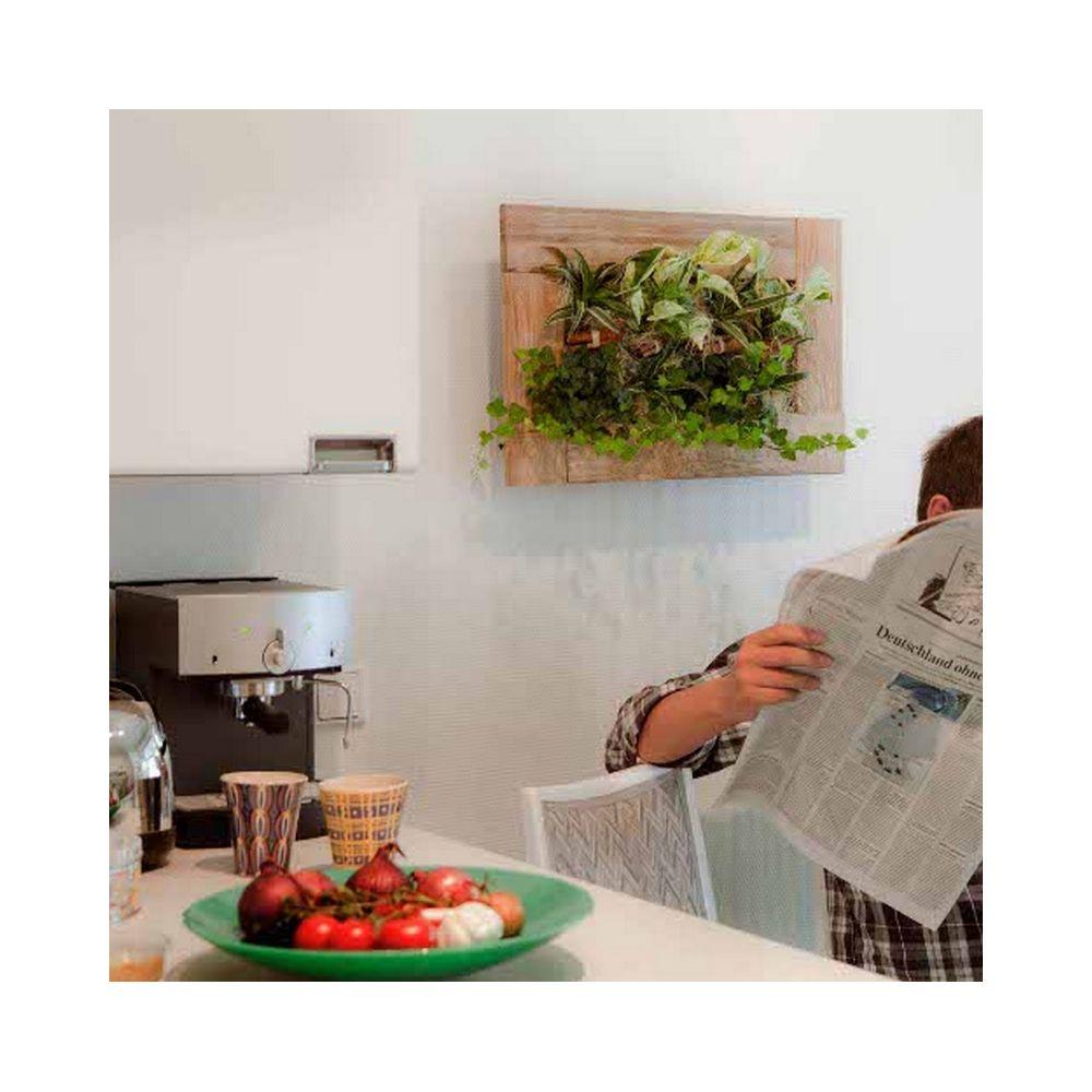 tableau v g tal wallflower kyoto alu bross m cadre v g tal 37x58x15 cm avec kit de fixation. Black Bedroom Furniture Sets. Home Design Ideas