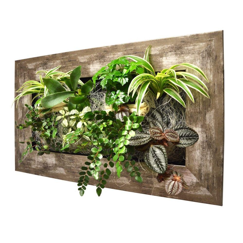 Tableau v g tal wallflower kyoto m tal vieilli m cadre - Tableau vegetal ...