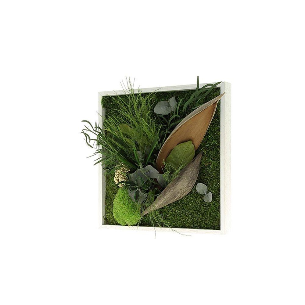 Tableau végétal stabilisé Nature carré