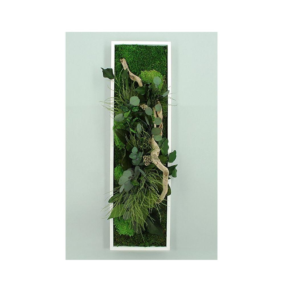 Tableau v g tal stabilis nature panoramic cadre v g tal - Tableau vegetal ...