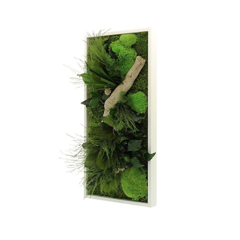 Tableau v g tal stabilis nature rectangle cadre v g tal - Tableau vegetal ...