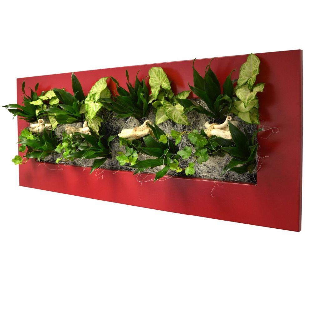 Tableau v g tal wallflower kyoto rouge l cadre v g tal - Tableau vegetal ...