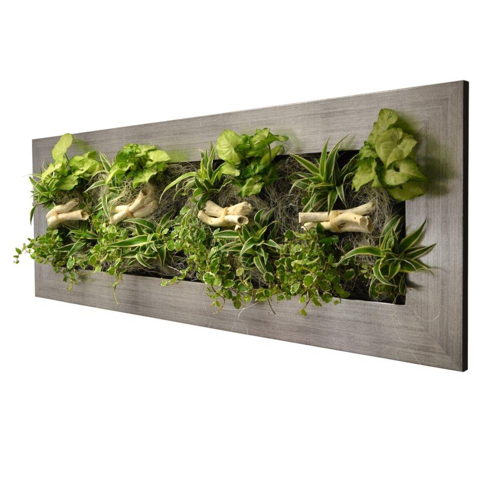 Tableau v g tal wallflower kyoto l alu bross cadre - Tableau vegetal ...
