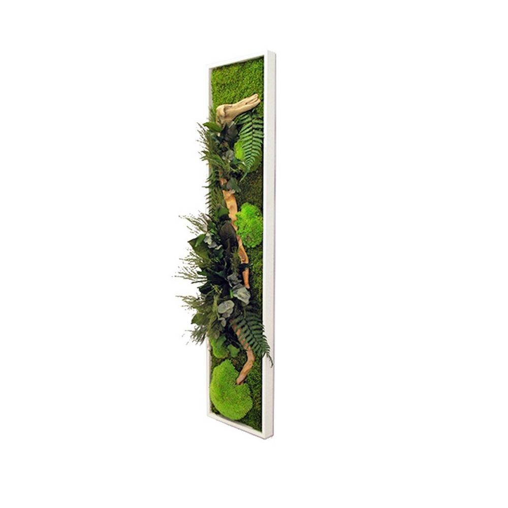 Tableau végétal stabilisé Nature Panoramic L