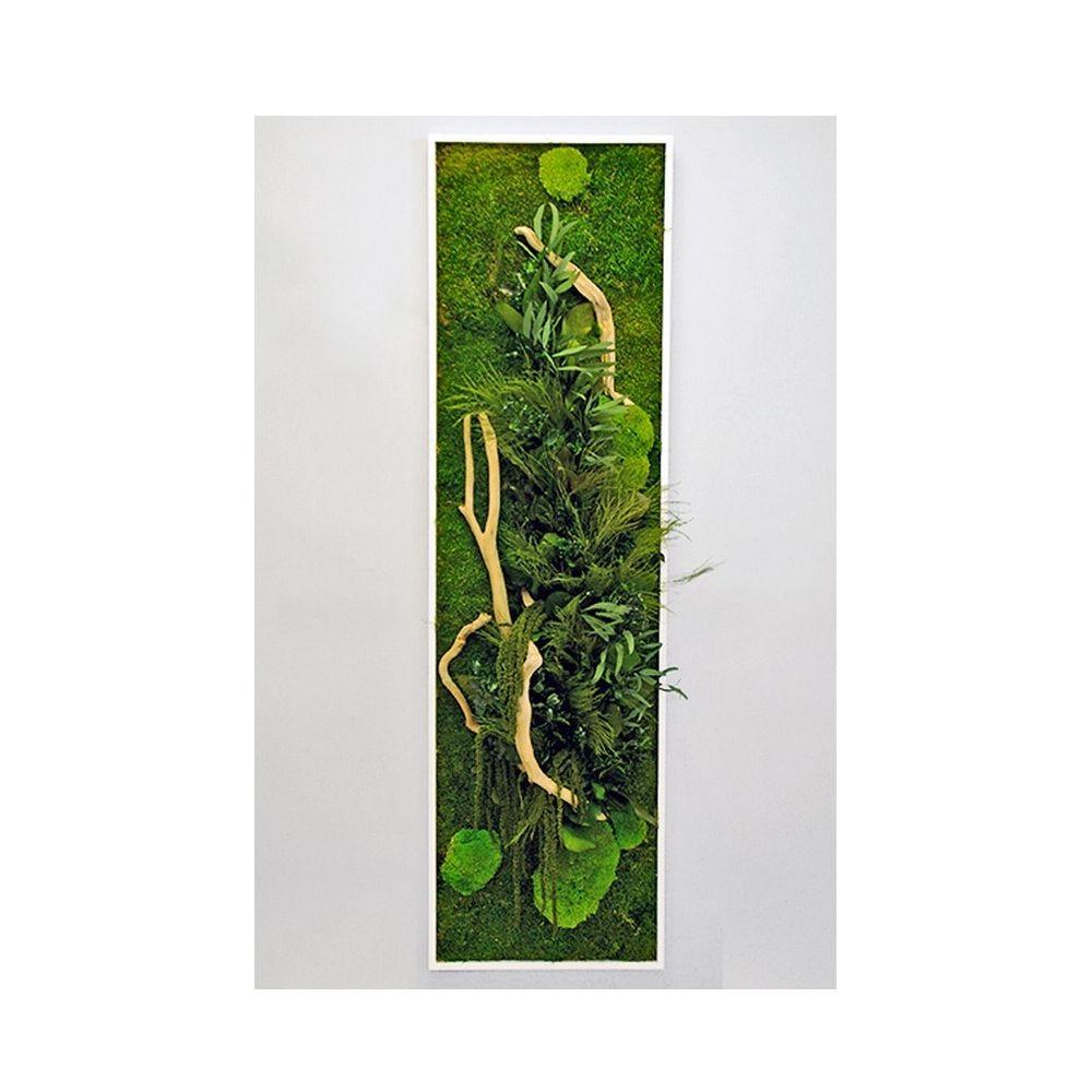 Tableau v g tal stabilis nature panoramic l cadre v g tal - Tableau vegetal ...