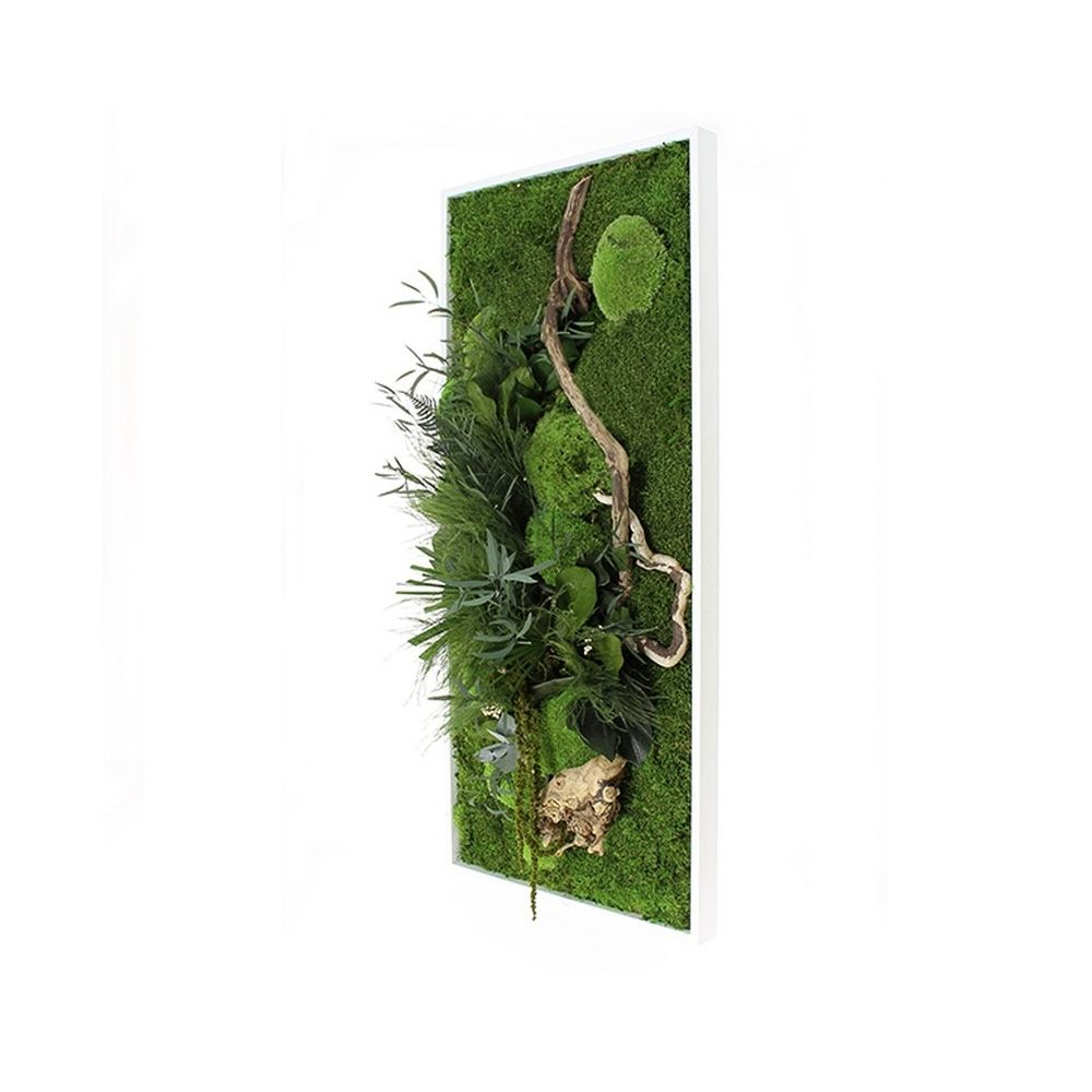 Tableau v g tal stabilis nature rectangle l cadre v g tal - Tableau vegetal ...