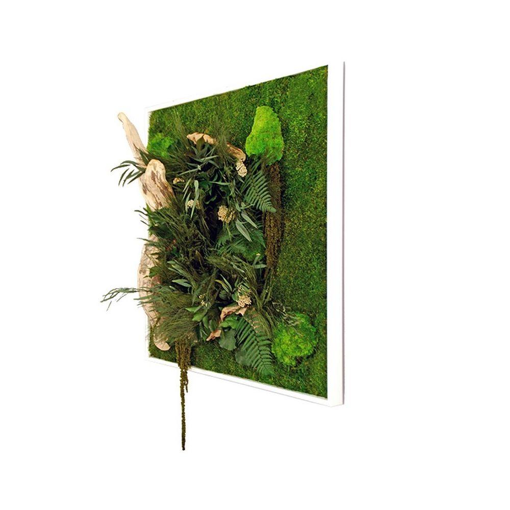 Tableau v g tal stabilis nature carr xl cadre v g tal - Tableau vegetal ...